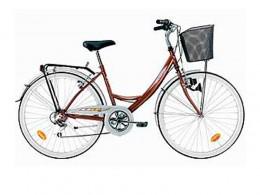 40_City_Bike_21S